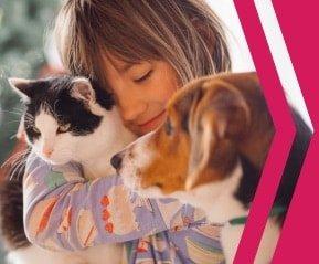 Animal Companionship